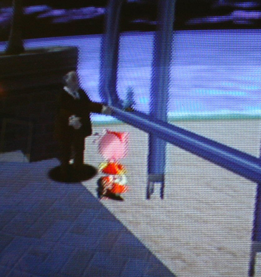 Sonic Adventure DX Director's Cut (2004) - Glitch FAQ - PC